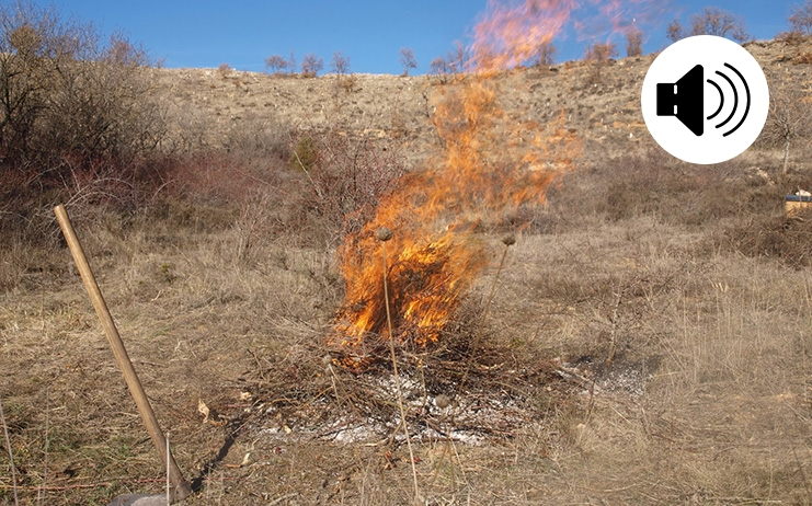 Última Hora!!! La sequera provoca modificacions en el període per cremar Actualitat