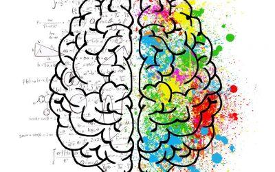 Personalitat i trastorns Dóna espai a la ment
