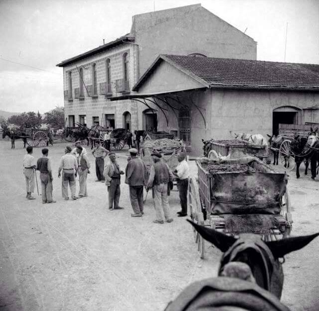 Monòver a mitjans del segle XX Història Local