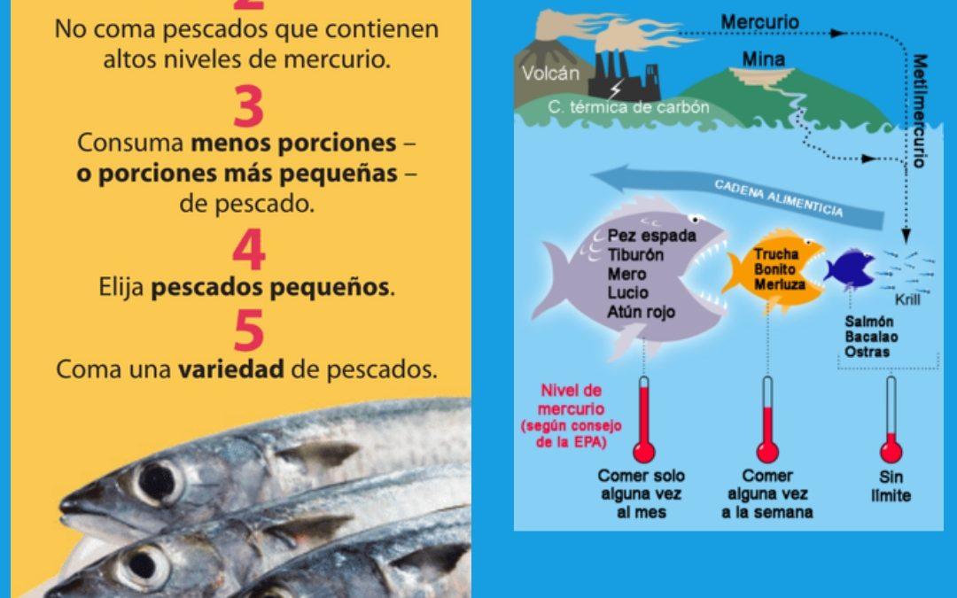 Consum de peix amb mercuri Parlem de Salut