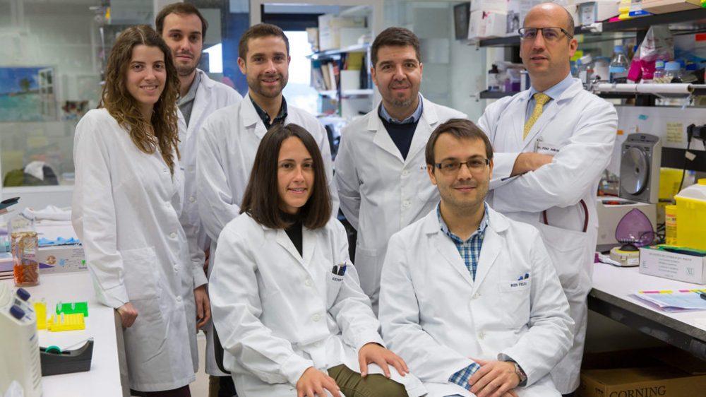 """El monover Silve Vicent, i investigadors de la Universitat de Navarra, localitzen la manera de frenar """"un dels càncers més agressius"""" Ciència"""