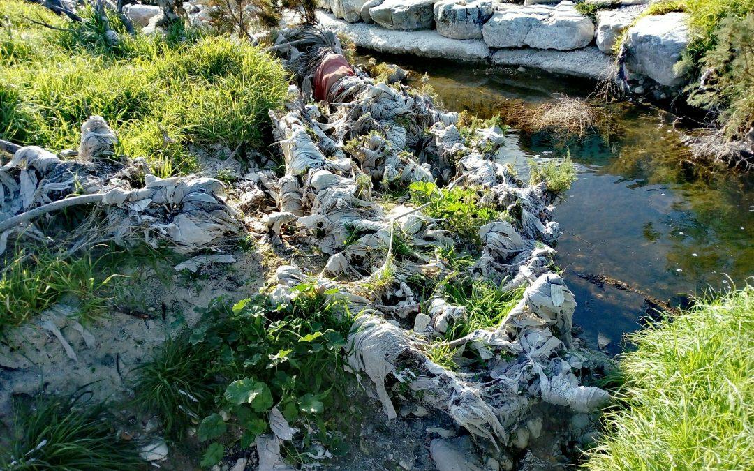 La conca del Riu Vinalopó, amb milers de tovalloles humides de bany Natura - Reportatge La Teua Ràdio