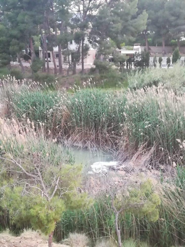 Les denúncies dels veïns del 'Charco Amargo' arriben fins a la Fiscalia de Medi Ambient REPORTATGE - Medi Ambient - Monòver